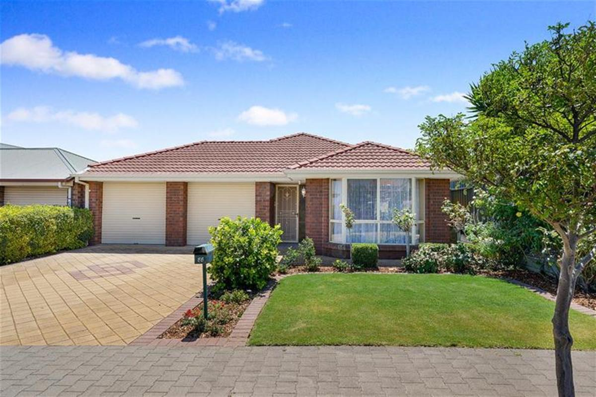 55-homestead-avenue-walkley-heights-5098-sa
