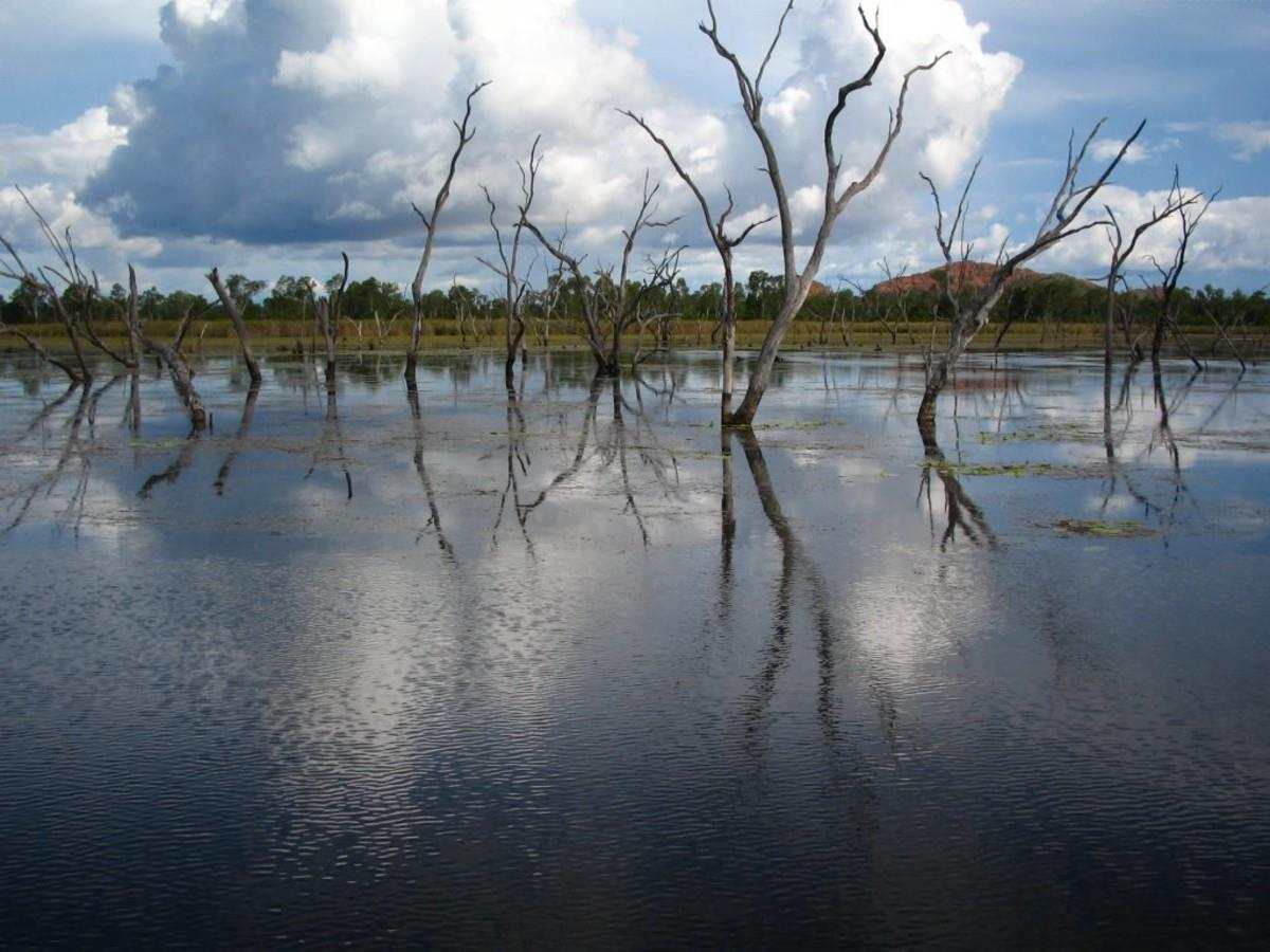 lot-21-lily-lagoon-private-estate-kununurra-6743-wa